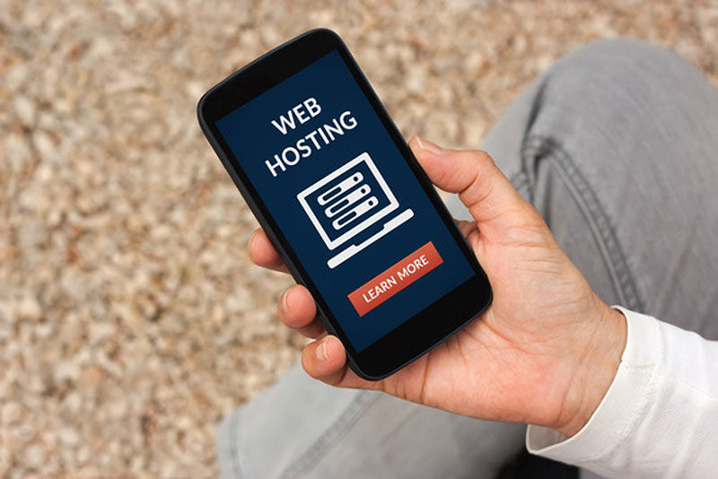 business web hosting choices
