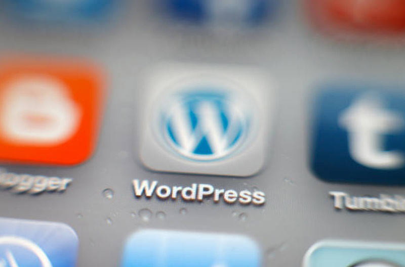 interest facts about wordpress blogging